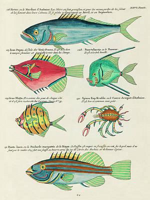 Surrealism Digital Art - Vintage, Whimsical Fish and Marine Life Illustration by Louis Renard - Byter, Bonte Hoen, Popou by Louis Renard