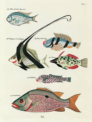 Surrealism Royalty Free Images - Vintage, Whimsical Fish and Marine Life Illustration by Louis Renard - Camboto, Vlagman Lenseigne Royalty-Free Image by Louis Renard