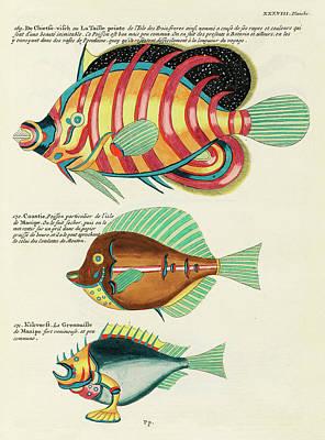 Surrealism Digital Art - Vintage, Whimsical Fish and Marine Life Illustration by Louis Renard - Chietse Visch, Caantie by Louis Renard