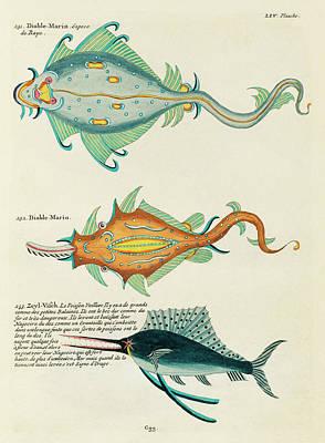 Surrealism Digital Art - Vintage, Whimsical Fish and Marine Life Illustration by Louis Renard - Diable Marin, Sea Devil by Louis Renard