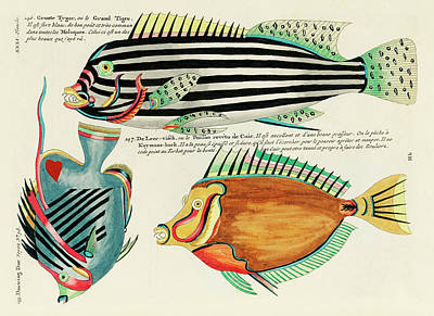 Surrealism Royalty-Free and Rights-Managed Images - Vintage, Whimsical Fish and Marine Life Illustration by Louis Renard - Grand Tigre, Douwing Duke by Louis Renard