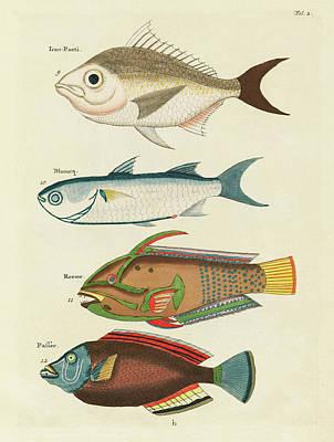 Surrealism Digital Art - Vintage, Whimsical Fish and Marine Life Illustration by Louis Renard - Ican Poeti, Blanacq, Reeme by Louis Renard