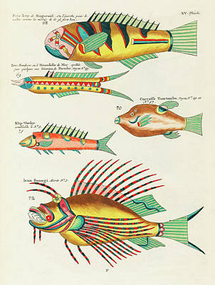 Animals Digital Art - Vintage, Whimsical Fish and Marine Life Illustration by Louis Renard - Ican Suangi, Pots Kop by Louis Renard