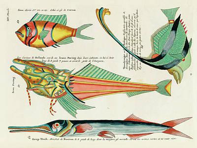 Surrealism Digital Art - Vintage, Whimsical Fish and Marine Life Illustration by Louis Renard - Icans Paring, Vaandraager by Louis Renard