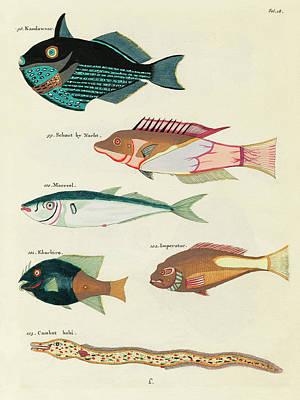 Surrealism Digital Art - Vintage, Whimsical Fish and Marine Life Illustration by Louis Renard - Kandawaar, Schout, Makreel by Louis Renard