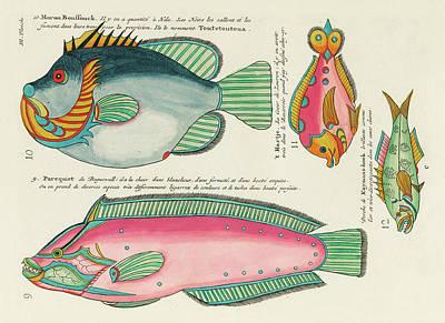 Surrealism Digital Art - Vintage, Whimsical Fish and Marine Life Illustration by Louis Renard - Moron Boussouck, Parequiet by Louis Renard