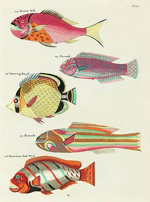 Surrealism Digital Art - Vintage, Whimsical Fish and Marine Life Illustration by Louis Renard - Raven Bek, Formosa, Brocade by Louis Renard
