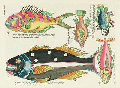 Surrealism Royalty Free Images - Vintage, Whimsical Fish and Marine Life Illustration by Louis Renard - Sosor, Macolor, Snavelaar Royalty-Free Image by Louis Renard