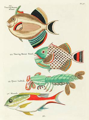 Surrealism Digital Art - Vintage, Whimsical Fish and Marine Life Illustration by Louis Renard - Touring Reeuw, Munnik by Louis Renard