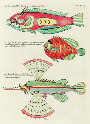 Surrealism Royalty Free Images - Vintage, Whimsical Fish and Marine Life Illustrations by Louis Renard - Puffer Fish, Flying Fish Royalty-Free Image by Studio Grafiikka