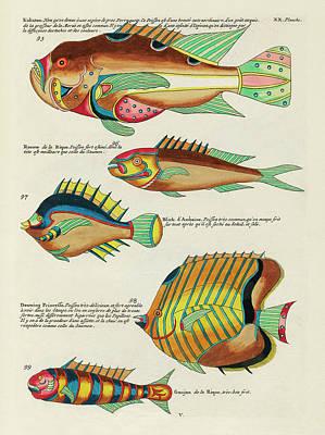 Surrealism Digital Art - Vintage, Whimsical Fish and Marine Life Illustration by Louis Renard - Kakatoe, Douwing Princesse by Studio Grafiikka