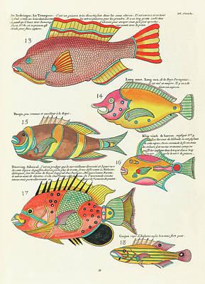 Surrealism Digital Art - Vintage, Whimsical Fish and Marine Life Illustration by Louis Renard - Le Trompeur, Douwing Admiral by Studio Grafiikka