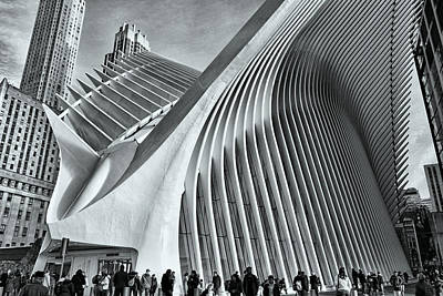 From The Kitchen - W T C Transportation Hub Oculus Exterior # 23 by Allen Beatty