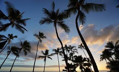 Fruits And Vegetables Still Life - Waikiki Sky by Christine Chun