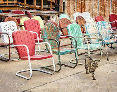 Photograph - Waiting for an Audience by Carol Fox Henrichs