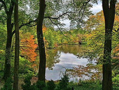 Moody Trees Rights Managed Images - Walden Pond in Central Park Royalty-Free Image by Allen Beatty