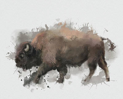 Everett Collection - Walking Buffalo by Bekim M