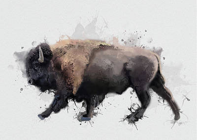 Everett Collection - Walking Buffalo V2 by Bekim M