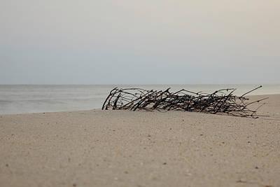 Unicorn Dust - Washed Ashore by Steve Gravano