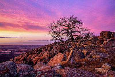 The Bunsen Burner - Watchtower - Tree at Summit of Mt Scott in Oklahoma by Southern Plains Photography