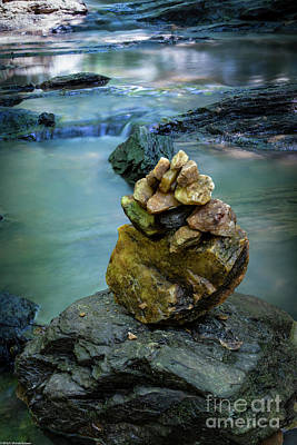 Animal Portraits - Water On The Rocks by Mitch Shindelbower