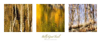 Kids Cartoons - Water Reflection Triptych by Francis Sullivan