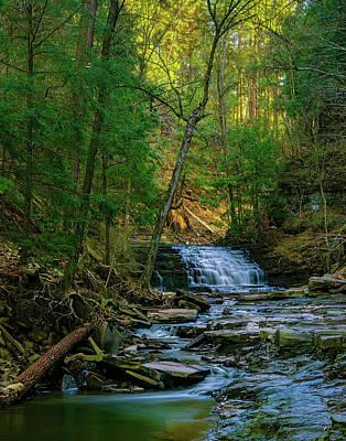 Animals Photos - Waterfall 098 by Jeff Stallard
