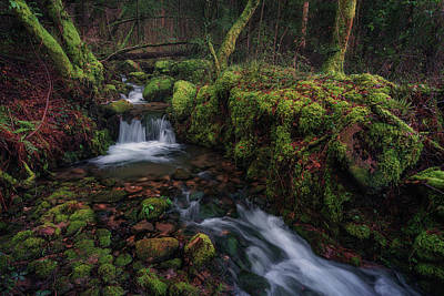 Photograph - Waterfall And Logs by Francisco Crusat