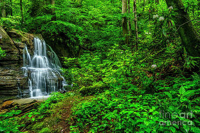 Kitchen Mark Rogan Rights Managed Images - Waterfall in the Woods Royalty-Free Image by Thomas R Fletcher