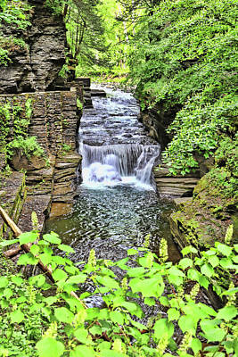 Pittsburgh According To Ron Magnes - Waterfalls of Robert H. Treman State Park - Enfield Creek by Allen Beatty