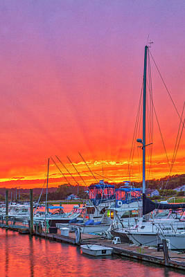 Rose - Outer Cape Cod Wellfleet Harbor and Marina by Juergen Roth