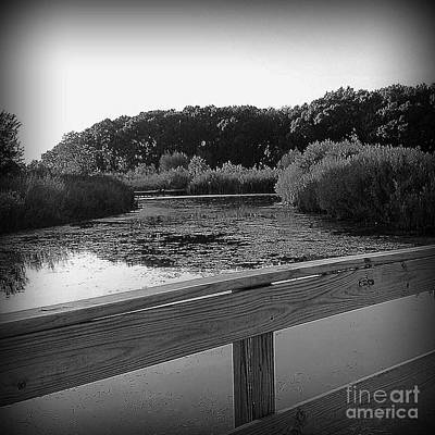 Frank J Casella Royalty-Free and Rights-Managed Images - Wetlands from the Bridge by Frank J Casella