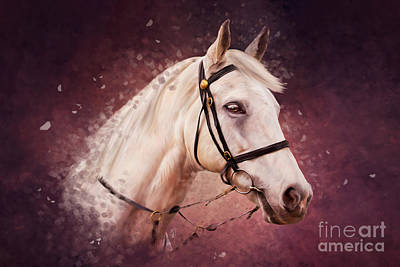 Painting - Whisper - Grey Horse Portrait by Michelle Wrighton