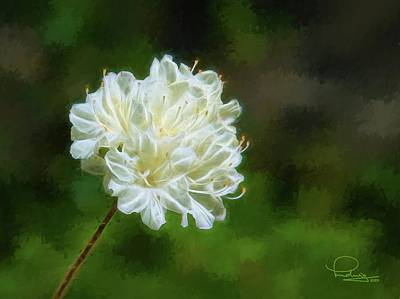 Digital Art - White Azalea by Ludwig Keck