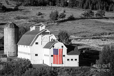 Fall Animals - White Barn with American Flag - Horizontal by Brian Jannsen