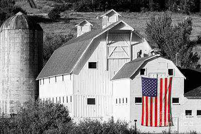 Fall Animals - White Barn with American Flag - Horizontal II by Brian Jannsen