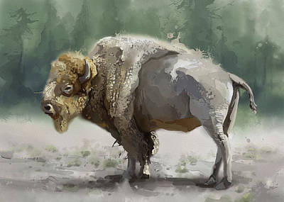 Everett Collection - White Buffalo by Bekim M