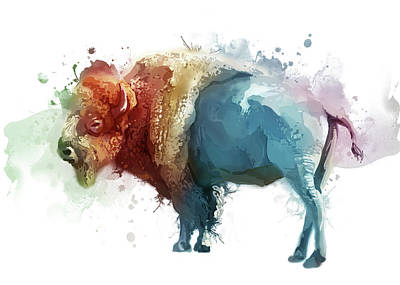 Everett Collection - White Buffalo Colorful by Bekim M