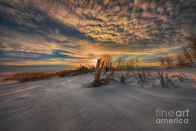 Photograph - White Desert of Canada by Ian McGregor