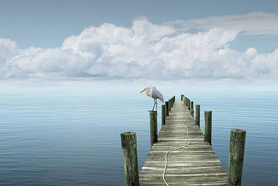 Book Quotes - White Egret perched on a piling of a Boat Dock by Randall Nyhof