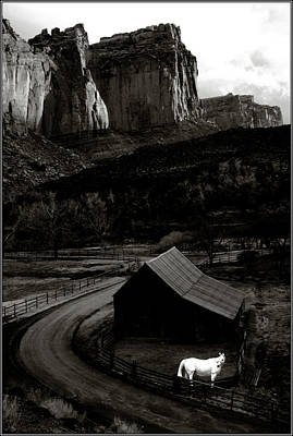 Abstract Oil Paintings Color Pattern And Texture - White Horse Monochrome in Canyonlands by Wayne King