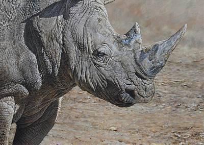 Painting - White Rhino by Alan M Hunt