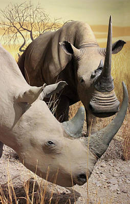 Fruits And Vegetables Still Life - White Rhinoceros Pair at the International Wildlife Museum, Tucson, AZ, USA by Derrick Neill