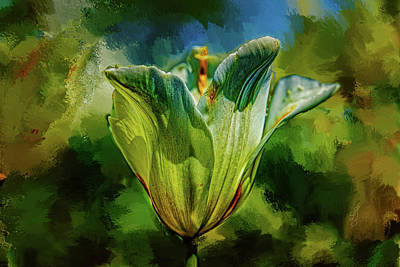 Just Desserts Rights Managed Images - White tulip #l1 Royalty-Free Image by Leif Sohlman