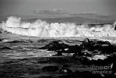 Madonna - Wild Surf Black n White by Julieanne Case