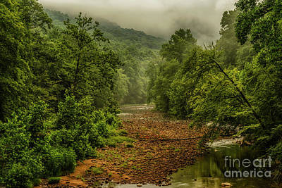 Impressionist Landscapes - Williams River on a Summer Morning by Thomas R Fletcher