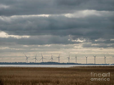 American Milestones - Wind turbines at Ringkoebing fjord in wester denmark by Frank Bach