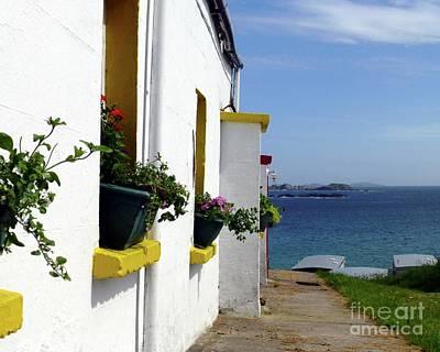 Unicorn Dust - Window Boxes Northern Ireland by Barbie Corbett-Newmin