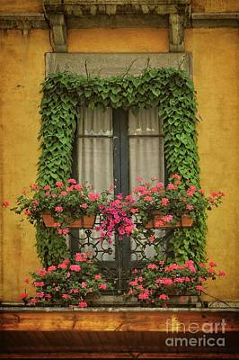 Door Locks And Handles Rights Managed Images - Window with Ivy and Flowers - Spain Royalty-Free Image by Mary Machare