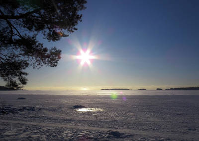 Rights Managed Images - Winter Afternoon In Finland  Royalty-Free Image by Johanna Hurmerinta